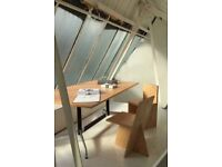 Eames design work desk/dining table (160x100 top)