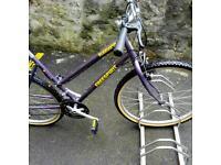Freespirit Roseland mountain bike