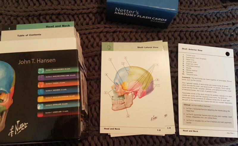 Netter39s Anatomy Flash Cards Other Books Music Games