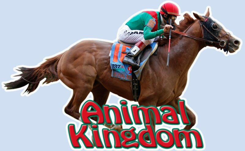 Animal Kingdom  Full Color Decal