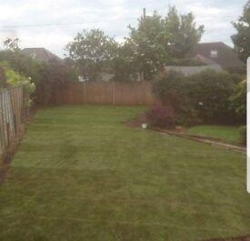 Garden Landscaping and Maintenance