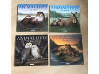 4 ANIMAL LIVES Children's Books
