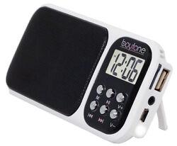 Boytone BT-92W Portable FM Radio Alarm Clock with Earphones, Flash light, USB