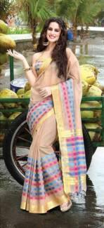 Sari / Saree / Indian Dress / Bollywood / Punjabi dress (#66)