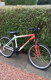 Bike for sale. Great condition but could do with a little device. Ideal Christmas present