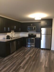 PET FRIENDLY all included basement apartment $1000