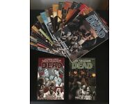 Walking dead comic books 1 -26