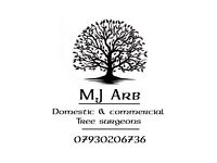 Tree Surgeon and Garden Care