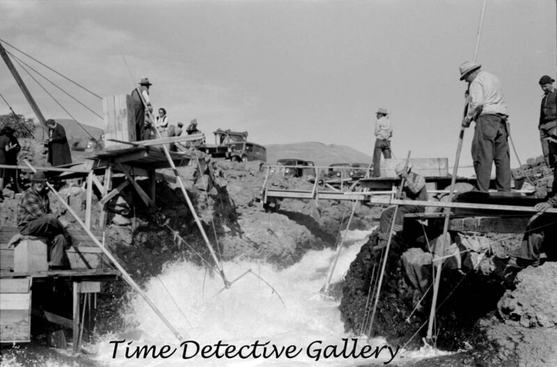 Native Americans Fishing for Salmon, (1) Celilo Falls, OR - Historic Photo Print