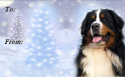 Bernese Christmas Labels by Starprint - No 1