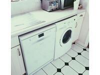 Hotpoint FDFEX 11011P Dishwasher