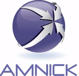 Amnick Human Resources Work Experience