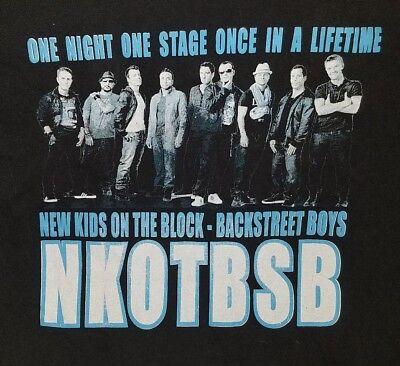 NEW KIDS ON THE BLOCK & BACKSTREET BOYS REUNION TOUR 2011 CONCERT T-SHIRT LARGE (New Kids On The Block Reunion Tour)