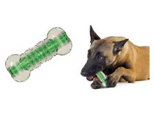 Crunchcore Crackle Chew Bone Toy for Dog - S - L - Treat dispensing Rubber chew