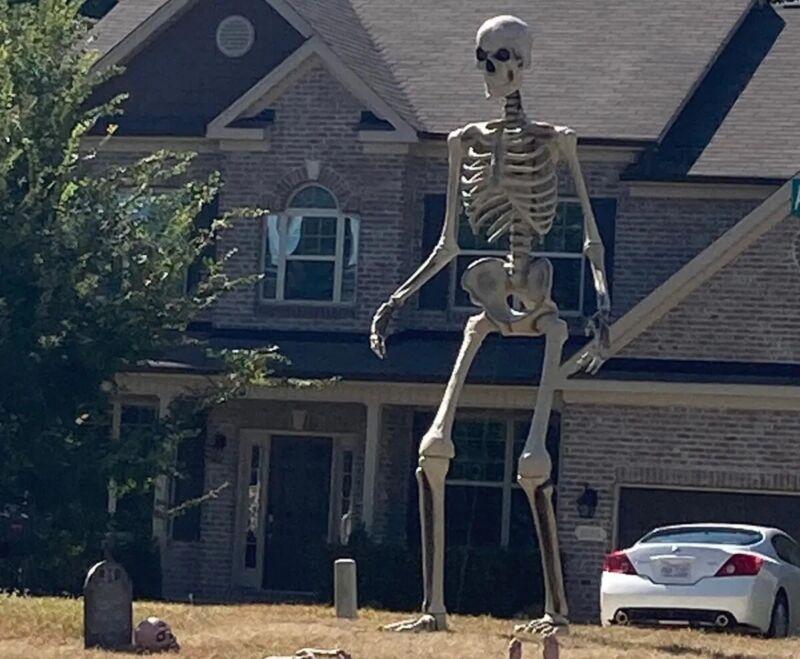 12 Foot Giant Skeleton W/ Animated LCD Eyes (CA)