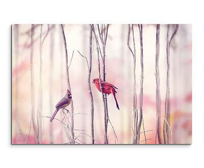 Vögel Nordkardinal Pärchen Wandbild auf Leinwand in verschiedenen Größen