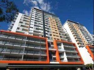 Room for rent in a modern apartment in Parramatta