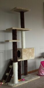 Cat scratcher and house Park Grove Burnie Area Preview