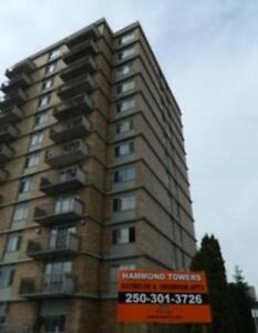 Hammond Tower - Bachelor Apartment for Rent