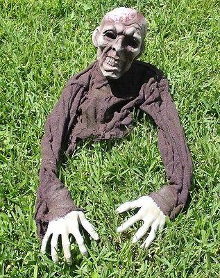 Zombie Brain Groundbreaker Prop Halloween NEW Haunted House Decor