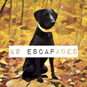 K9 Escapades Certified Canine Coaching & Professional Care