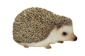 Vivid Arts - PET PALS WILDLIFE PET & PET CARRIER BOX - Pygmy Hedgehog