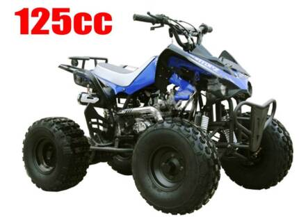 NEW  125cc QUAD  Raptor Style.. Capalaba Brisbane South East Preview