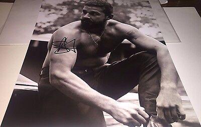 Shia Labeouf Shirtless B W Hand Signed 11X14 Autographed Photo W Coa Sl