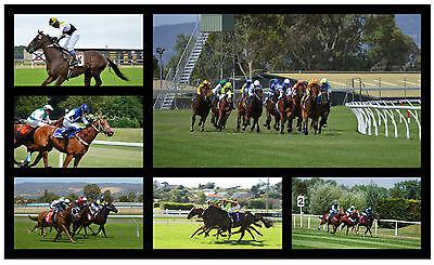 HORSE RACING - SOUVENIR NOVELTY FRIDGE MAGNET  - BRAND NEW - NICE LITTLE GIFT