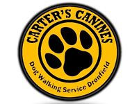 Carter's Canines Ltd - Dog Walking & Pet Services Dronfield