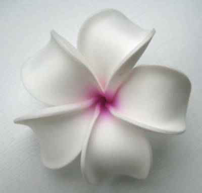Hawaiian Flower Bridal Wedding Party Hair Clip Plumeria QTY ( 2 ) Hair - Hawaiian Hair Clips