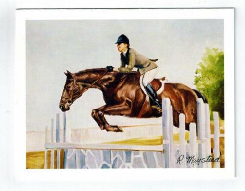 New Brown Horse Equestrian Notecard Set - 6 Note Cards By Ruth Maystead # HOS-15