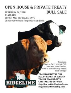 Open House and Private Treaty Bull sale