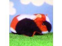 GUINEA PIG MINI TOY MAKING KIT By MINICRAFT - Ready to Sew