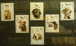 POLAND STAMPS MNH Fi3049-54 Sc2900-05 Mi3197-02 - Hunting Dogs - 1989, clean - <span itemprop=availableAtOrFrom>Reda, Polska</span> - POLAND STAMPS MNH Fi3049-54 Sc2900-05 Mi3197-02 - Hunting Dogs - 1989, clean - Reda, Polska
