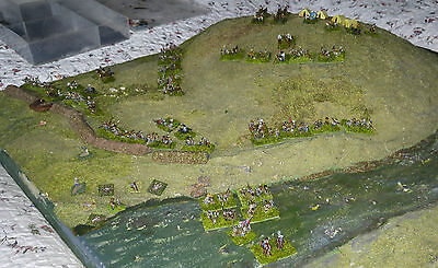 6mm Metal Adler ACW Confederate Painted & Based Army