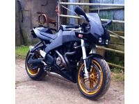 BUELL XB 12R firebolt 2004 under 8000miles excellent condition