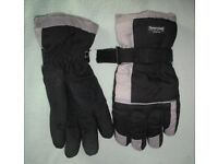 A pair of Thinsulate Gloves.