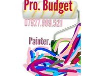 Pro Budget Painter Wanted???
