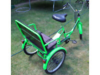 ELECTRIC TRICYCLE, TRIKE, EBIKE, ELECTRIC BIKE. SPECIAL NEEDS, 1 ADULT + 2 CHILDRENS SEATS, AMAZING