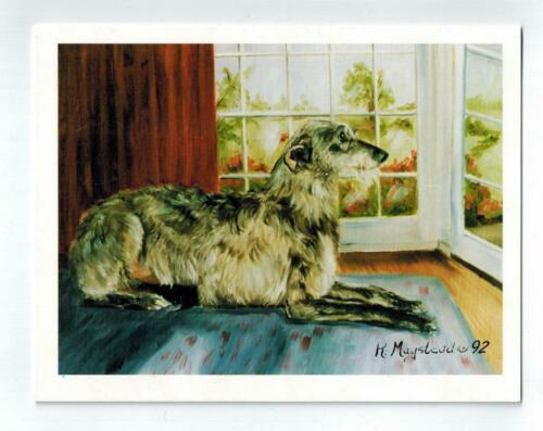 New Scottish Deerhound Looking Out Window 12 Note Cards By Ruth Maystead SCD-2