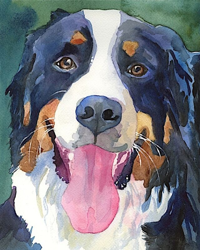 Bernese Mountain Dog Art PRINT from Painting | Berner Gifts, Poster 11x14
