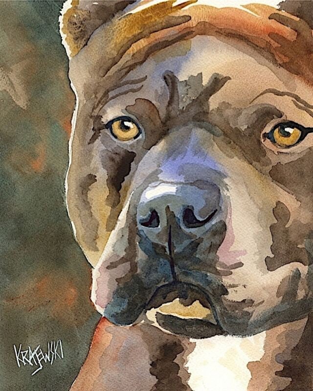 Pit Bull Art Print from Painting | Pitbull Gifts, Poster, Picture, Decor 8x10