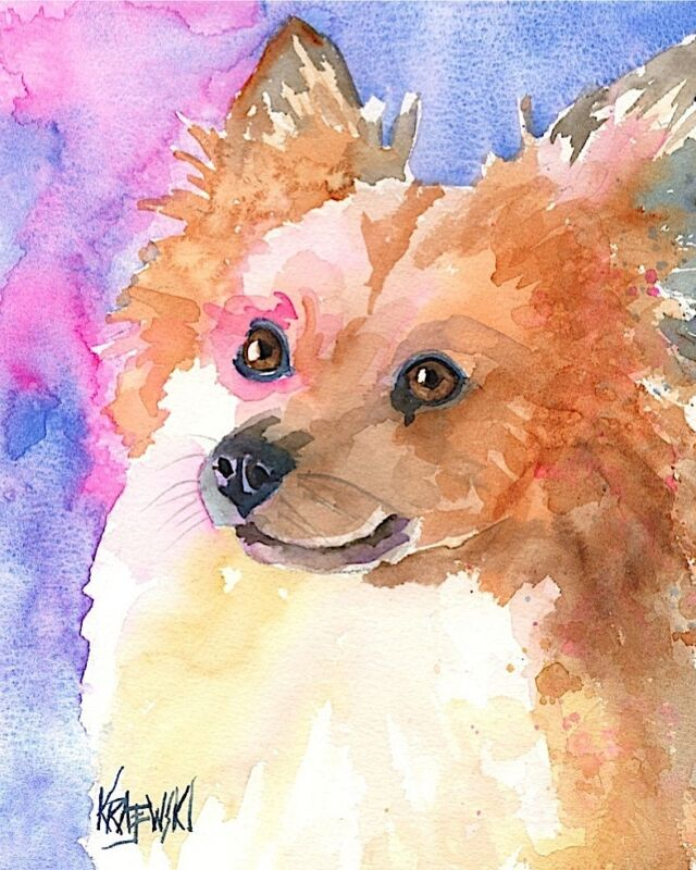Pomeranian Art Print Signed by Artist Ron Krajewski Painting 8x10 Dog