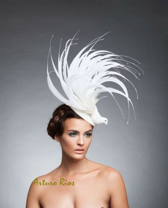 White bird derby fascinator, Kentucky Derby hat for women