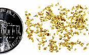 1.000 GRAMS ALASKAN YUKON BC NATURAL PURE GOLD NUGGETS MESH #30 W BOTTLE (#B300)