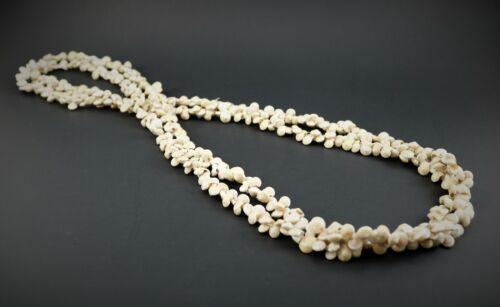 Vintage Kahelelani Hawaiian Shell Lei Necklace Two Strands