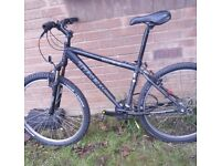 TREK 3700 mountain bike.