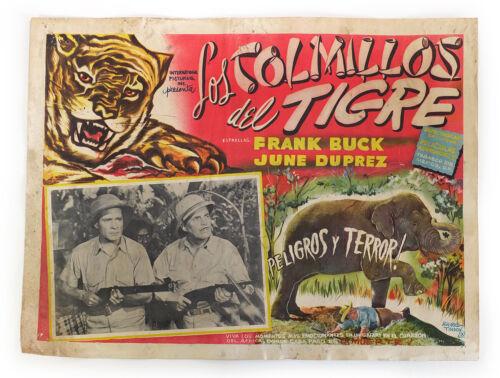 1943 Original Spanish Movie Poster / Lobby Card - TIGER FANGS - Frank Buck