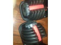 Pair of Adjustable dumbbells + bench 2.5 - 24kg